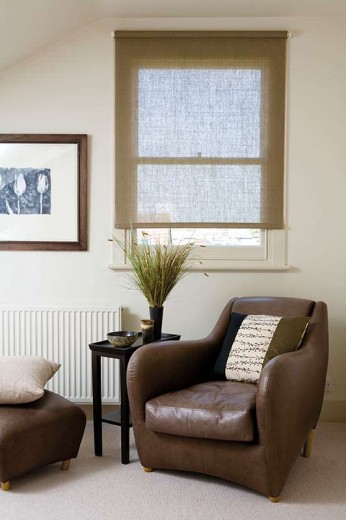 Living area blinds